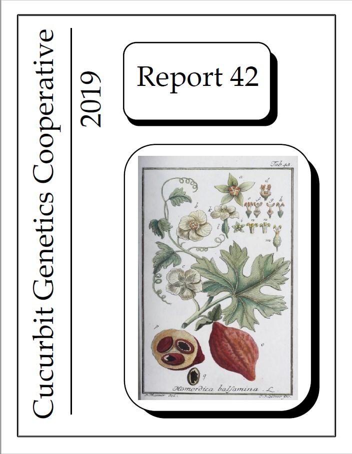 2019 CGC report